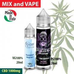 Blueberry CBD 1000 - Shot series 20ml