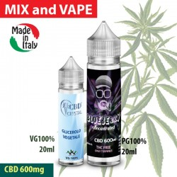 Blueberry CBD 600 - shot series 20ml